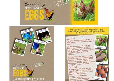 Retail-POS-Design-Black Dog Eggs-Gallery
