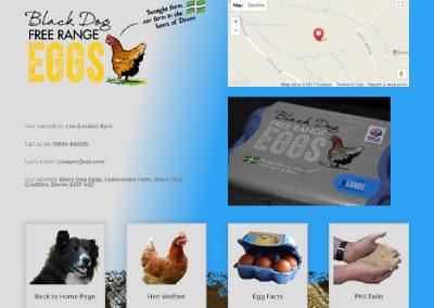 Website-Black Dog Eggs-Contact