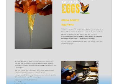 Website-Black Dog Eggs-Egg Facts-1