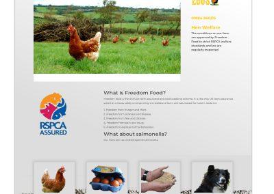 Website-Black Dog Eggs-Welfare